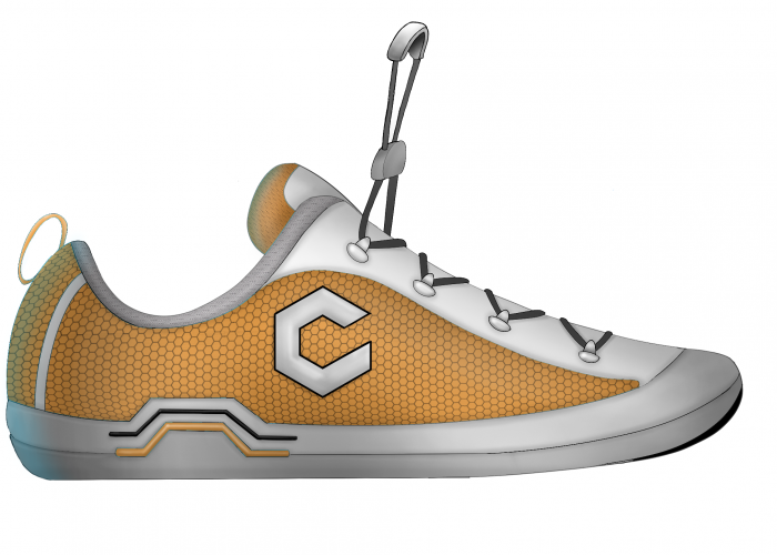 Chinook Watershoe Concepts